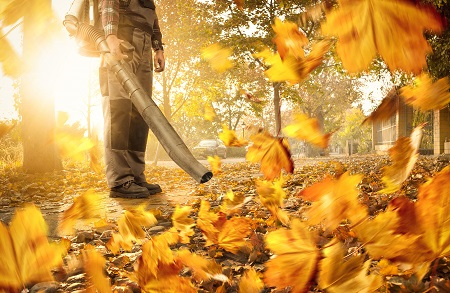 A man on the purpose of handling the fallen leaves by using leaf blower