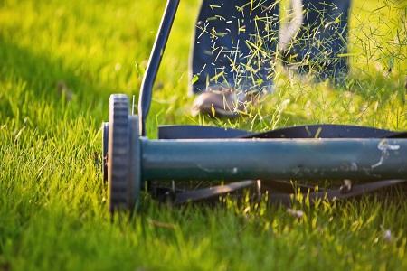 Man mulching the grass using mulching mower